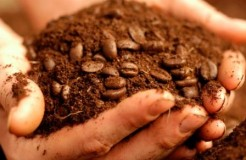如何利用味道來調整咖啡研磨粗幼度和分量~