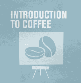 Intro to coffee