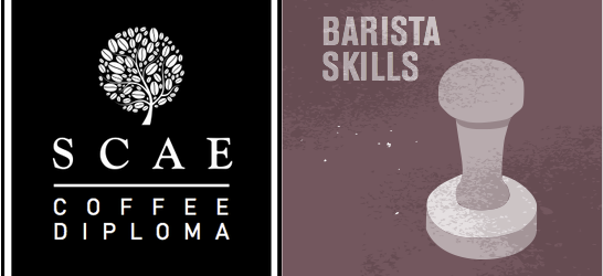 SCAE Certificate – Barista Skills (Intermediate) ($8700)