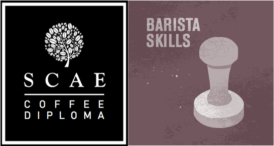 SCAE & Barista Skills
