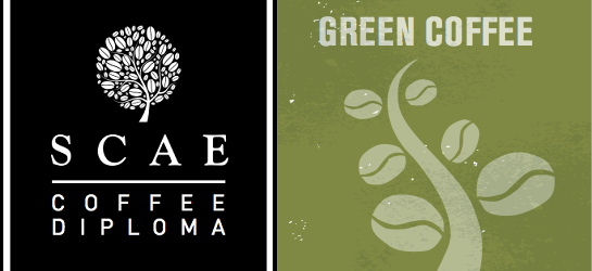 *Tsuen Wan* SCAE Certificate – Green Coffee (Foundation) ($2100)