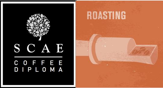 SCAE Coffee Roasting Module