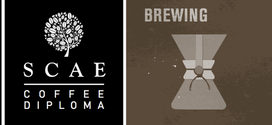 SCAE Certificate – Brewing (Intermediate) ($6200)